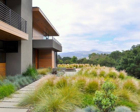 Xeriscape Design Garden Pinterest