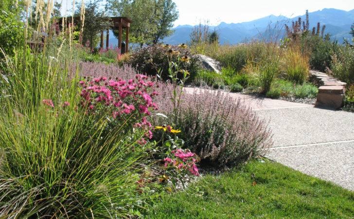 Xeriscape Landscape Design Ideas Pinterest
