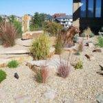 Xeriscape Style Natural Outdoor Living Landscape Design