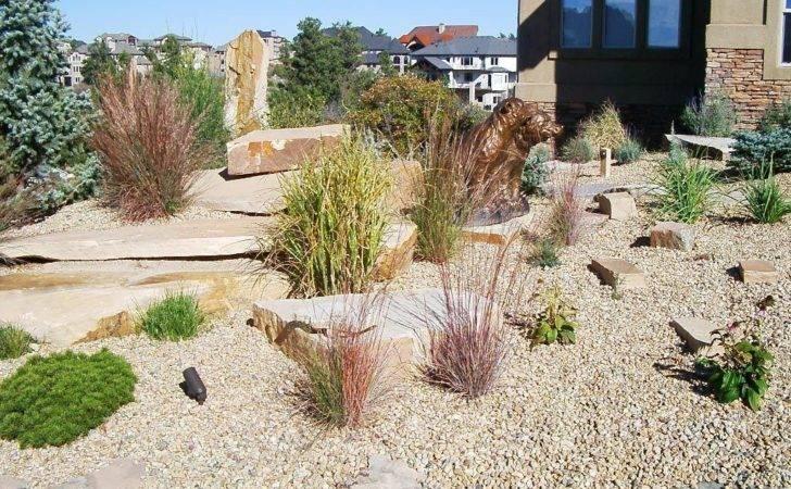 Xeriscape Style Natural Outdoor Living Landscape Design