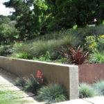 Xeriscaped Lanscape Modern Xeriscaping Ideas Your Outdoor Space