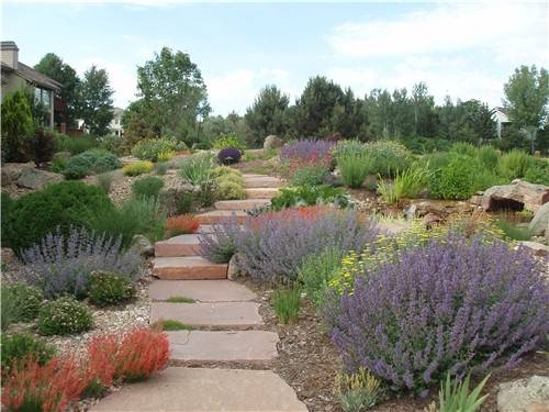Xeriscaping Ideas Landscaping Network