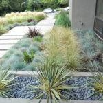 Xeriscaping Stepping Stones Modern Ideas Your