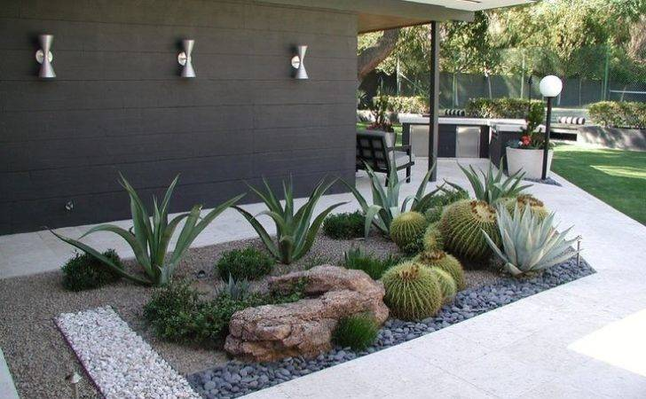 Xeriscaping Visit Media Tumblr Outer Spaces Pinterest