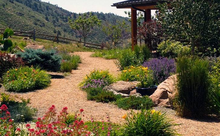 Xeriscaping Your Yard Fantastic Way Reduce Water Costs