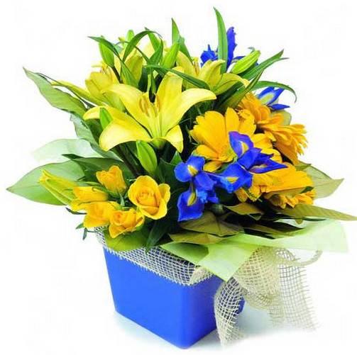 Yellow Purple Flowers Birthday Arrangement