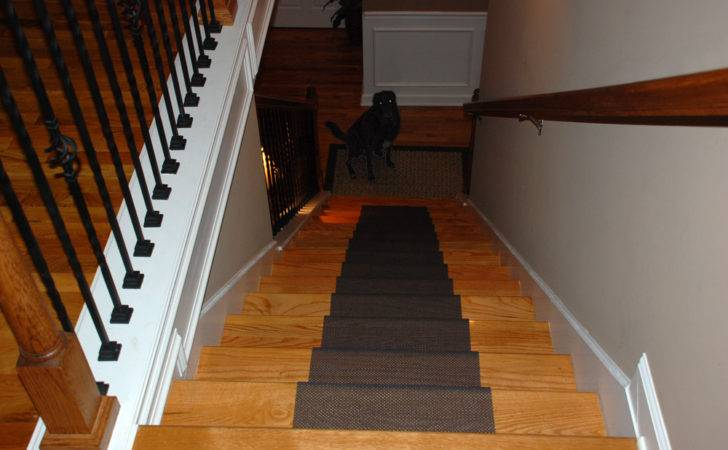 Your Dog Refusing Down Stairs Solution Diy Stair Runner