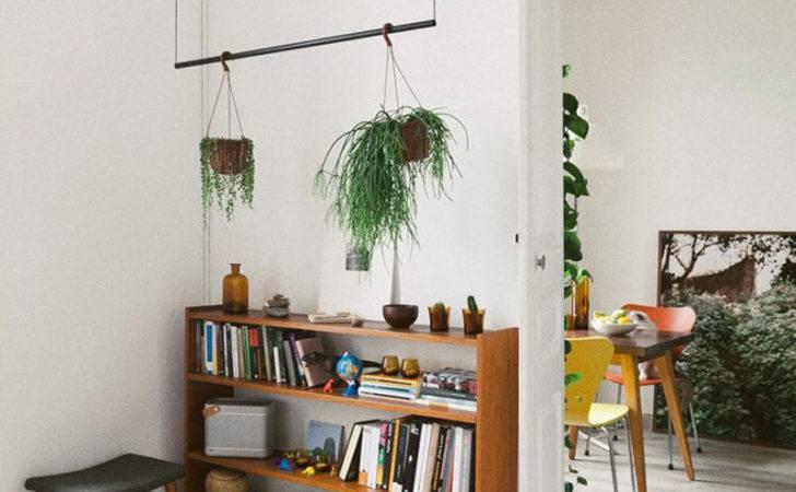 Your Interior Green Indoor Plants Save Money